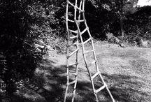 Echelles -  Ladders / Les échelles de Francis Berthault