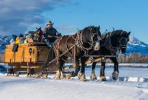10 Things to Do in Jackson Hole this Winter