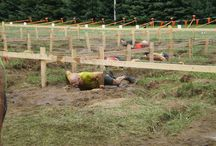 Tough Mudder / Barracuda employees participate in the Tough Mudder competitions