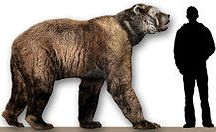 They Grew HOW Big?! / Dinosaurs, shminosaurs! It's the extinct animals that came AFTER them I love best!