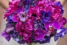Radiant Orchid Weddings 2014 / 2014