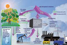 SSV GreenGuru / Schemes of Sustainable Development / by Sustainable Silicon Valley