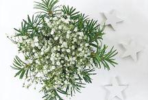 Blumen und Deko im Winter