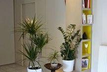 decor design inspiration