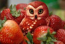 L'art du fruit