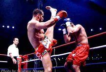 KOMBAT SPORTS / MMA,K1,BOXE.....