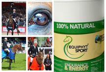 Equiphyt, when nature meets veterinary science / 100 % natural best quality supplements for a healthy pet -Gluten free -Grain free -No animal origin ingredient -100% Pure, nothing added, no fillers, no conservants -No GMO -Ecocertified -No pesticides, heavy metal......
