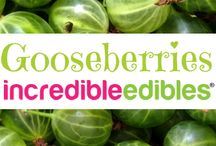 Incredible Edibles® Goose Berry Recipes / Use your homegrown Incredible Edibles® Goose Berries in any of these healthy recipes approved by a Registered Holistic Nutritionist.