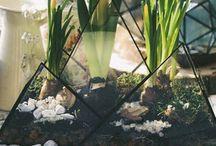 Флорариум с суккулентами / Флорариум с суккулентами. Флорариумы оптом. Доставка пустых форм во все регионы России. Цены и формы на нашем сайте - https://www.dejavu-flowers.ru/florarium-kazan/