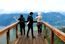 Travel ~ Vancouver Island