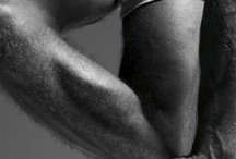 The Male Body / chest,legs,arms,ass....