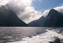NZ 2014