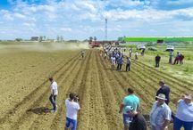 Ziua Câmpului 2014 / 19 august 2014 - eveniment dedicat fermierilor din partea de Vest a României.