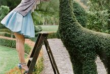 Topiary Art and the Art of the Garden