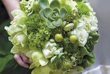 Bouquet Noivas - Tipos e Modelos