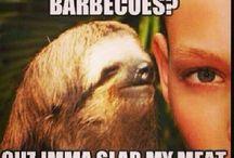 Grumpy cat/Rape sloth memes