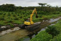 EXCAVATOR KEBUN SAWIT TANAH GAMBUT RAWA-RAWA / JUAL dan RENTAL amphibious excavator / swamp excavator, excavator rawa-rawa, swamp beko, excavator amphibi.  Jual pontoon undercarriage yang berguna untuk menjadikan excavator darat menjadi excavator amphibi atau swamp excavator atau excavator rawa-rawa, floating excavator. Swamp backhoe cocok untuk pengerukan lahan tanah gambut, empang, tambak, danau, sungai, pantai.  HP: 081241346651 atau 081241888131  PIN BB : 2B145C35