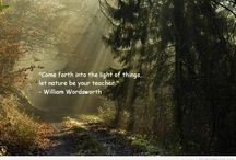 The Wonder of it All / Nature in all her beauty, magick & wisdom...