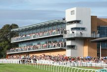 Premier Grandstand / This spectacular £6.5 million stand offers 12 private hospitality boxes with bars and balconies, a glass-fronted hospitality suite catering for 250 people and external terrace providing capacity for 1,200 people.