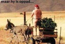 Afrikaans is lekker!!!!!!