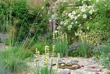 Harjindar Singh / Garden Inspiration