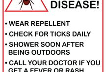 Lyme Disease / Tips for preventing Lyme Disease and removing Ticks.