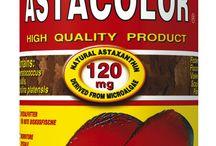 Tropical / Gama de alimentos y productos para peces de la firma TROPICAL