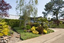 Eichler Home Neighborhoods / Here is a one stop board to see all of the Eichler Neighborhoods in the Bay Area including the East Bay, South Bay, Penninsula, and Main County. Have fun looking!