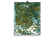Art Prints: Botanical