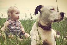 pet&people