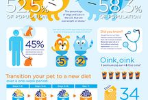 Pet Obesity & Weight Management / Help keep your pet the proper weight!