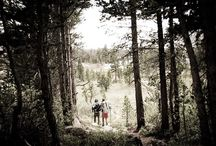Pacific Crest Trail, Sierra High Route, Pacific Northwest Trail