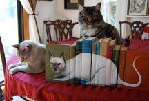 Cats and Books / by SecretSafeBooks.com