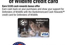 Credit Cards for Causes