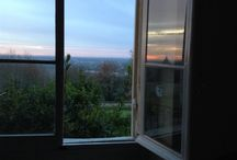 Through the window / by Dixie Nichols