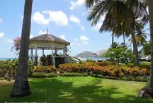 Sandals Halcyon / A true garden of Eden, Sandals Halcyon Beach in simply beautiful St. Lucia is a tranquil slice of paradise for couples.