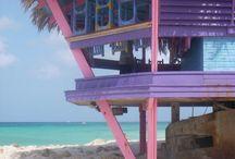 Aruba / by Michelle Hughes