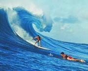 Surf's Up / Cool waves and surfing images.