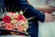 Promotii & oferte de servicii foto & video / Aici sunt prezentate toate promotiile si ofertele de servicii foto & video pentru nunta, botez & alte evenimente. Promotiile se aplica de obicei pentru evenimentele ce au loc in Timisoara