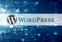 Création de site web / Retrouvez nos offres d'hébergement clé en main pour créer votre site : http://www.lws.fr/hebergement_web.php