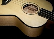 Tonewoods / Tonewoods and substitutes used for guitars, ukuleles and other instruments