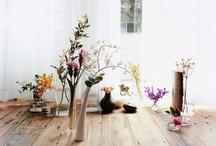 interior/flower