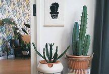 Planten binnen en standaard ideeen