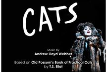 SDMT's CATS / San Diego Musical Theatre Presents CATS!  3/21-4/6 at the North Park Theatre www.sdmt.org 858-560-5740
