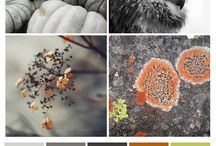 colour blends / From nature