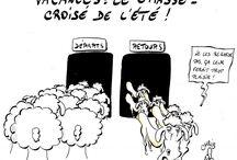 tecnology/sheep