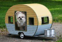 casitas mascotas