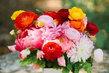 Weddings: colorful
