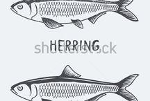 Fish / Fish art