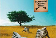 Környezet & állatvédelem